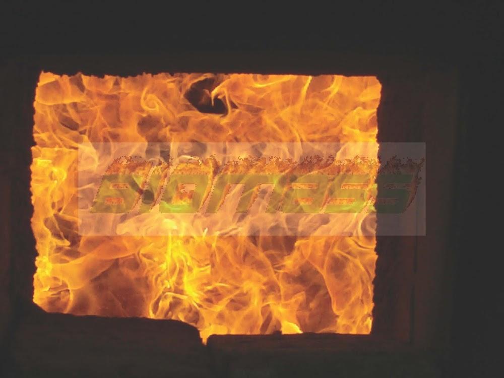 Pellet Burner Flame