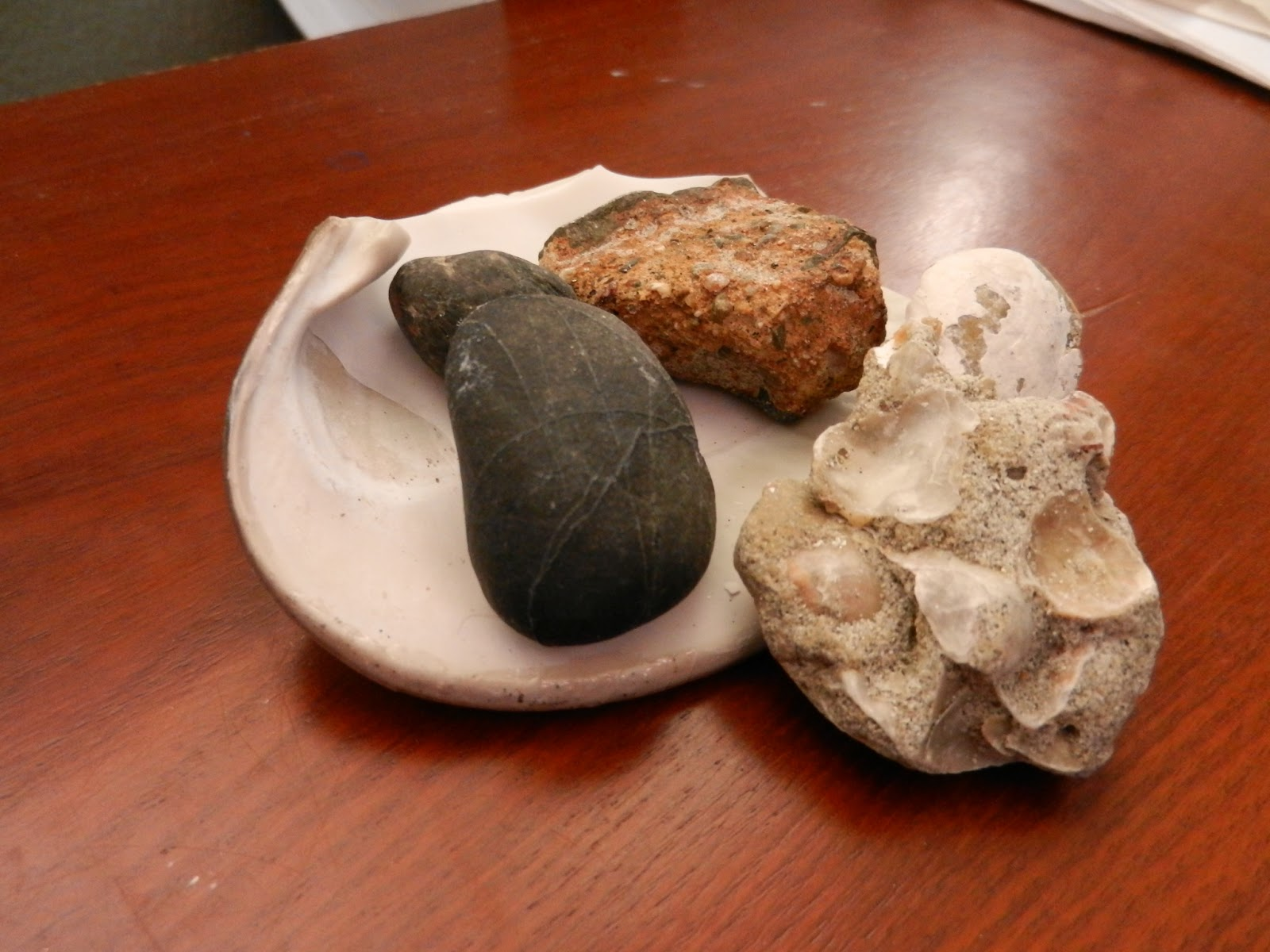 sea rock collection picture