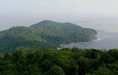 Mui Ca Mau National Park became the 5 th Ramsar of Vietnam and the 2088 th of the world