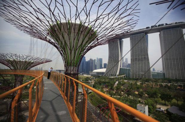 jardim vertical autocad:Arquitetura e Arte: Cingapura cria jardins em árvores de metal