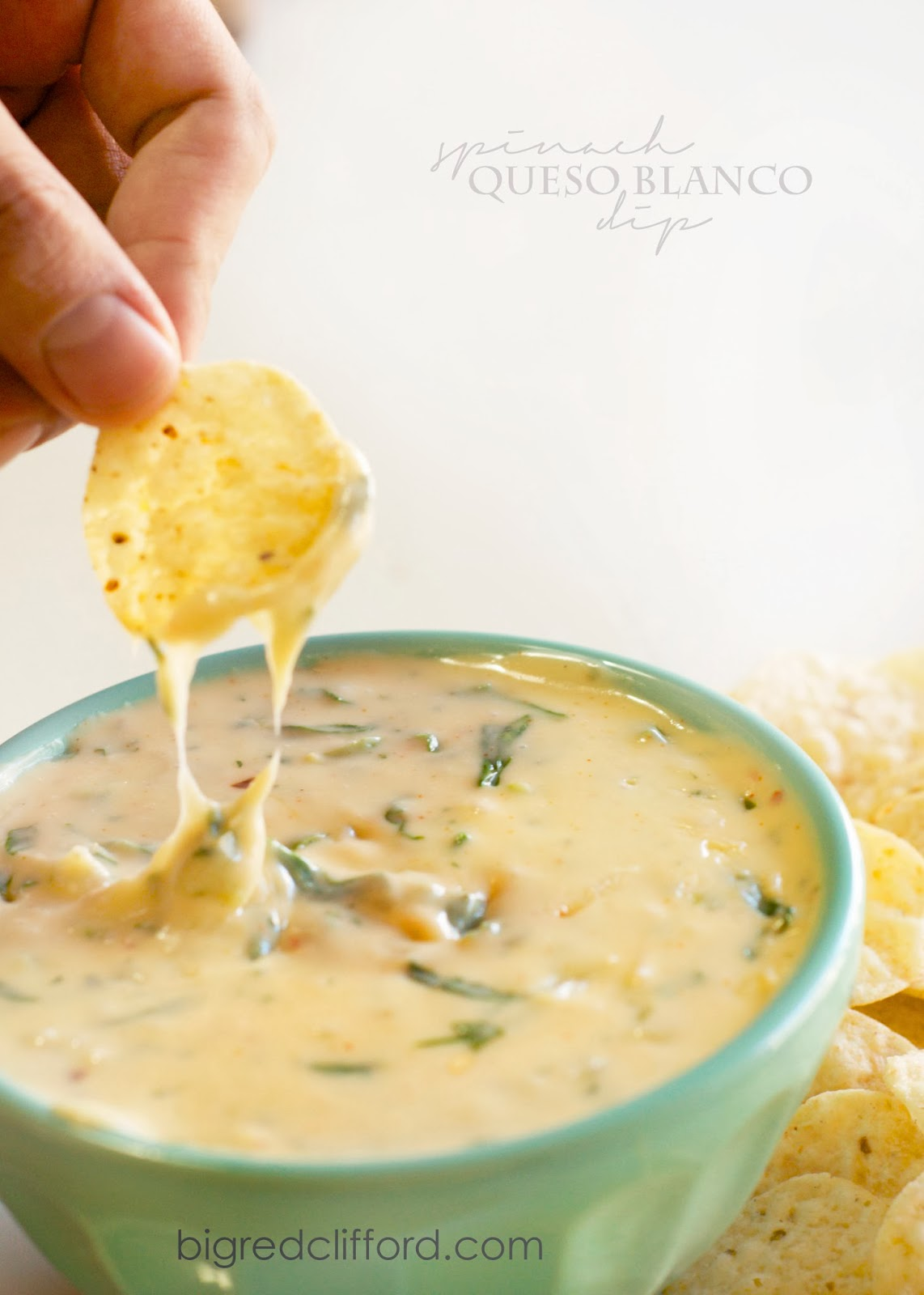 http://www.bigredclifford.com/2013/01/the-best-queso-blanco-dip-recipe.html?m=1