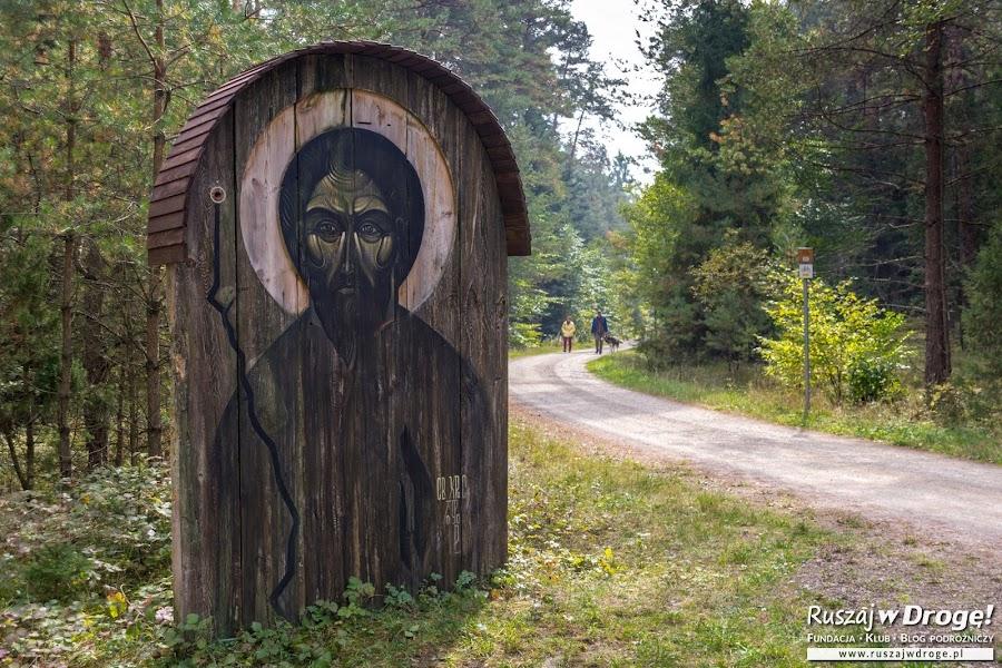 Sztuka leśna tzw land art na drodze z Górecka do Zwierzyńca