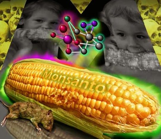 sementes-armagedom