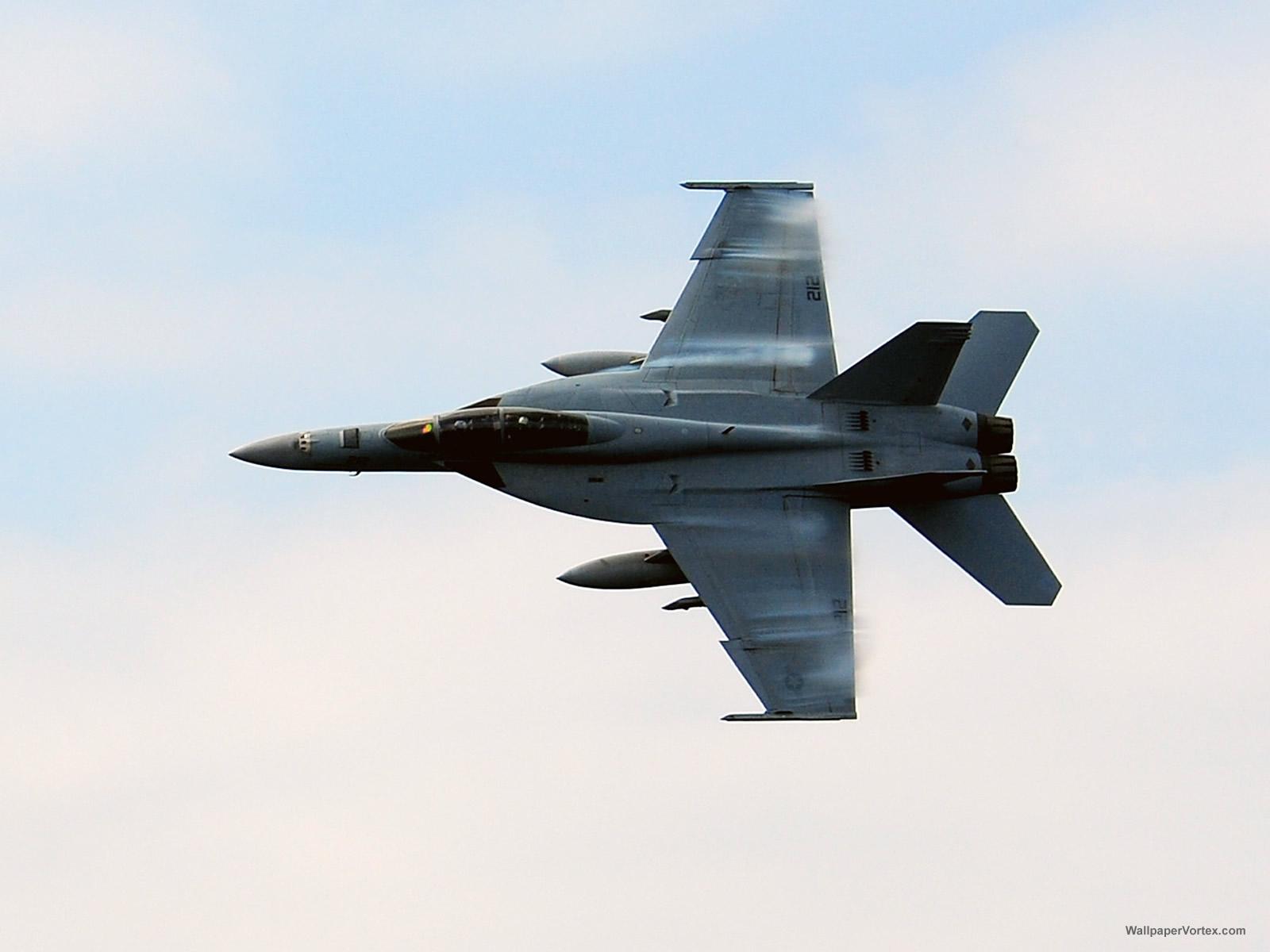 http://1.bp.blogspot.com/-xl4dnfjUZQg/Tmb5P21B5AI/AAAAAAAABUw/sBMelFMGKm4/s1600/3039-military_f_a_18f_super_hornet_wallpaper.jpg