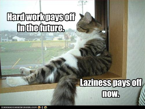 lol cat lazy