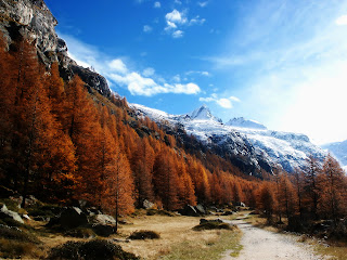 Snow Mountain Nature Autumn