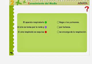 http://primerodecarlos.com/SEGUNDO_PRIMARIA/Anaya/datos/03_cmedio/03_Recursos/actividades/01/cuerpo7.swf