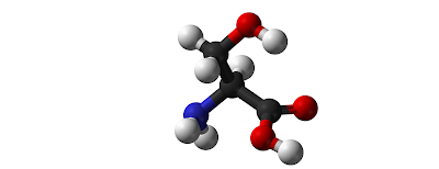 Sumber Serin,  Fungsi, Manfaat, Dosis, Dan Efek Samping