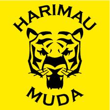 Senarai Pemain Skuad Harimau Muda Bawah 22 Tahun Malaysia