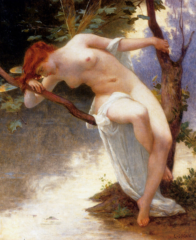 guillaume seignac dragonfly