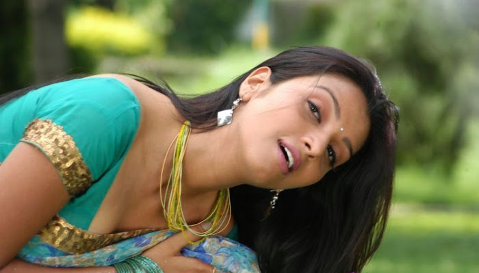 madhulika in saree hot images