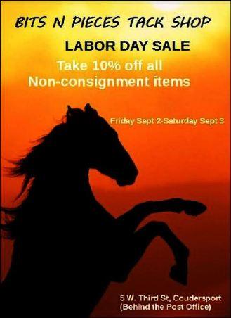 9-2/3 Labor Day Sale