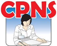 Pendaftaran Penerimaan CPNS Online 2013