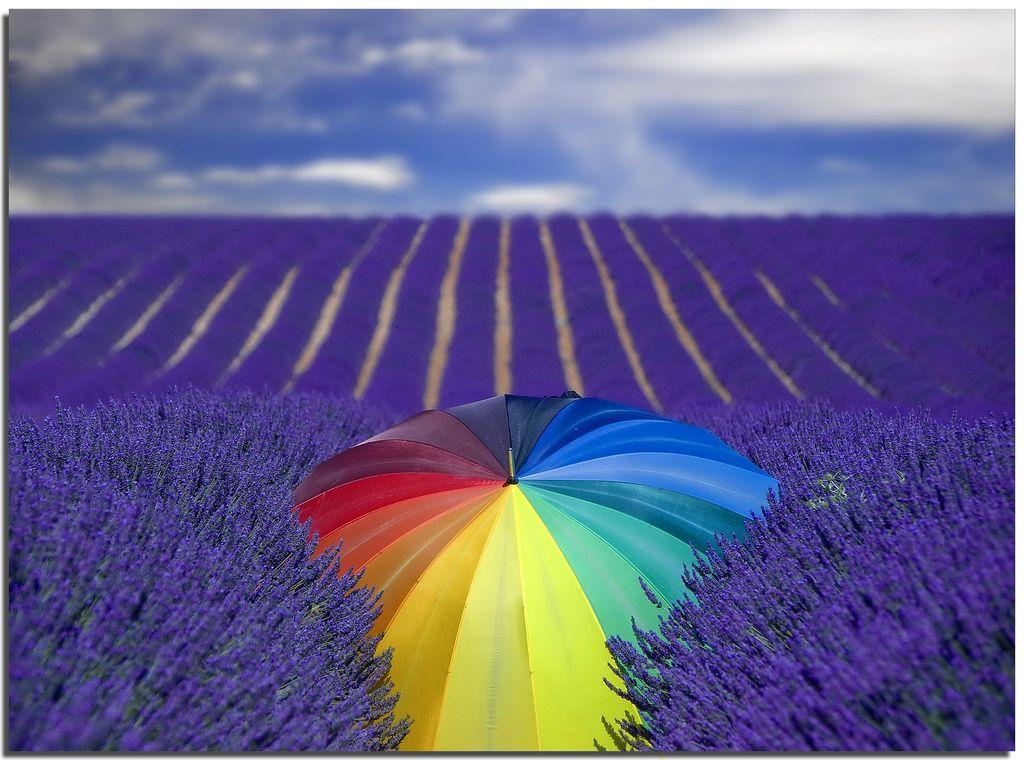 21. Rain of colour