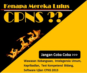 Download Soal CPNS 2013