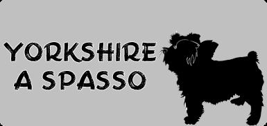 Yorkshire a spasso