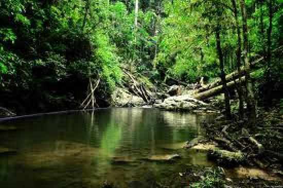 منتزه تامان نياجرا ماليزيا on-the-way-to-abai-w