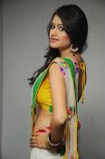 Kushi glamorous saree photos-thumbnail-7