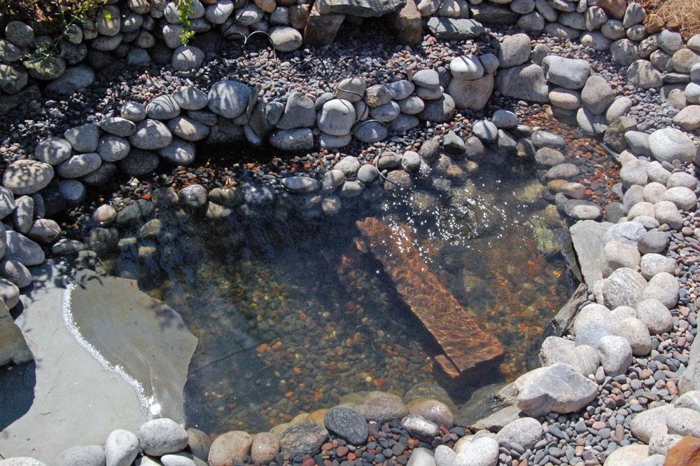Eclectic design choices designs for your life garden for Garden pond gravel