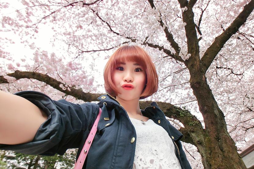 Chanwon Travel In Japan 5 Sakura Blossom Haircut Don Quijote