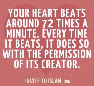 Heart Beat Islam