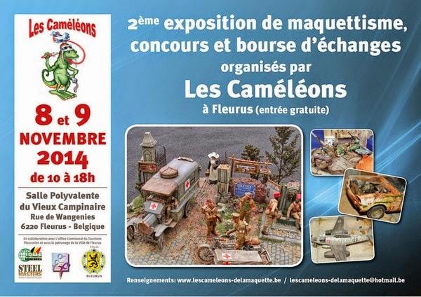 http://stankmodels.blogspot.fr/2014/11/les-cameleons-fleurus-2014.html