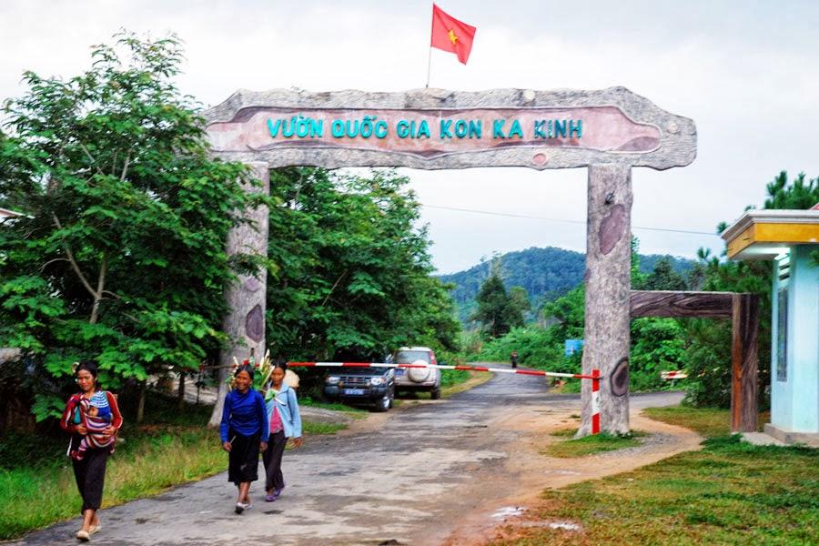 Gia Lai: Lợi ích từ giao khoán quản lý, bảo vệ rừng