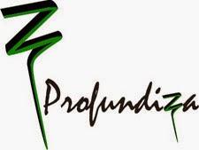 Profundiza 2014:Nuestros Proyectos
