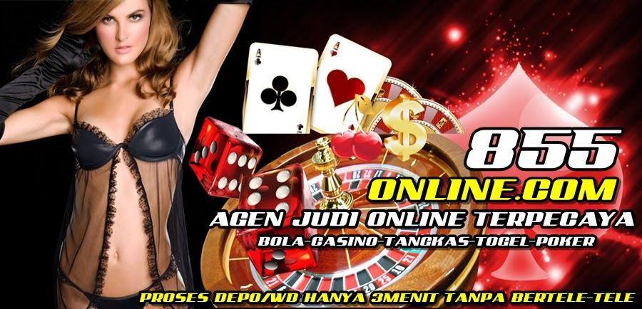 855online.com - Agen Bola SBOBET IBCBET Casino338A Tangkas Togel Online Indonesia Terpercaya