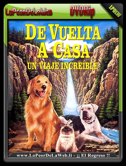 De Vuelta a Casa (1993) DVDRip Latino