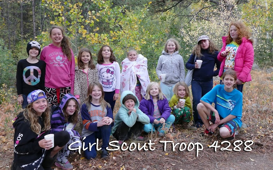 Girl Scout Troop 4288