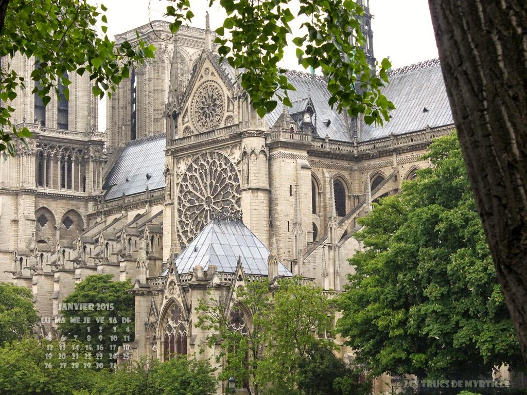 JANVIER 2015 - Wallpaper #4 : Notre-Dame de Paris, quai de Seine