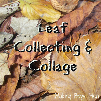 Leaf collecting and collage