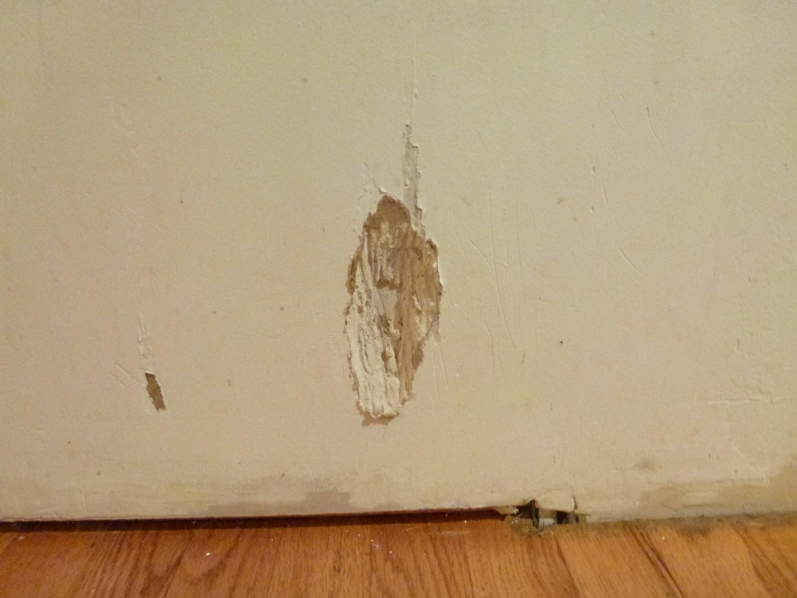 drywall repair wallpaper - photo #28