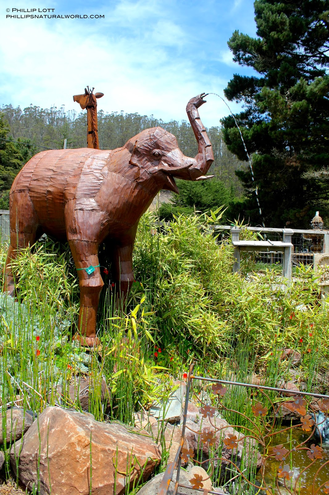 above a life sized elephant spewing water from his trunk into a pond