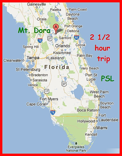 mount dora on florida map