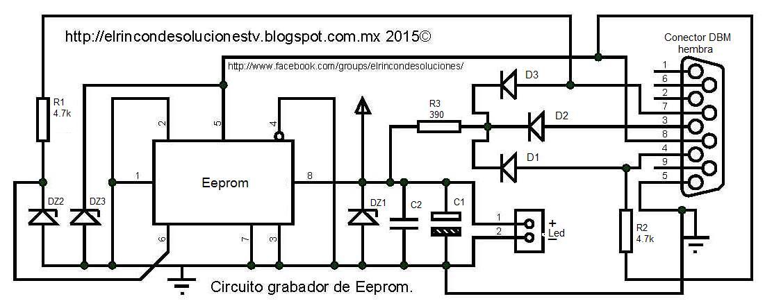 Dorable Hembra Diagrama De Sistema Reproductivo Se 6 Composición ...