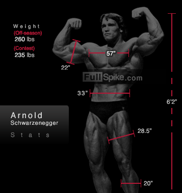 Chest Master: How Arnold Schwarzenegger Built The Best ...