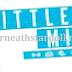 Little Mix : Soon on Stardoll