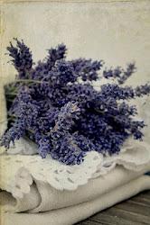 Pretty lavender...