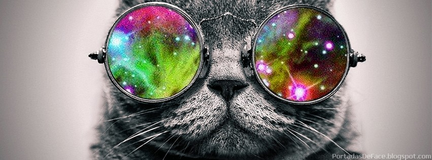 Portada para Facebook de Gatos Graciosos con lentes