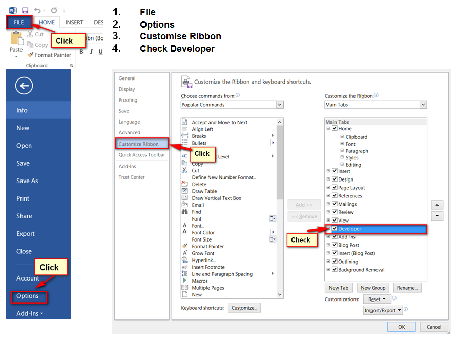 how to add developer tab in word 2010