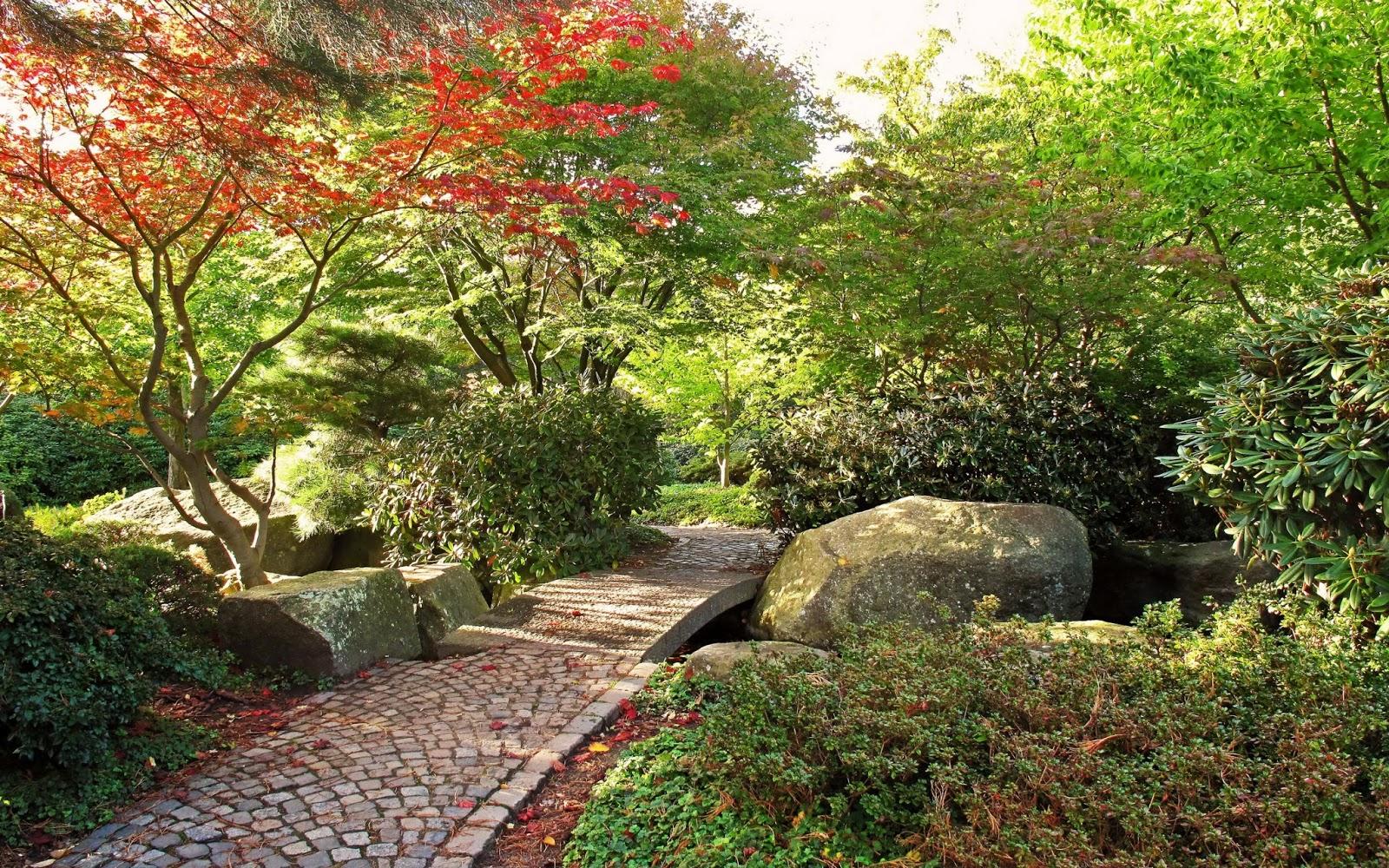 Caminando por un jard n bot nico fotos e im genes en for Fotos de jardines