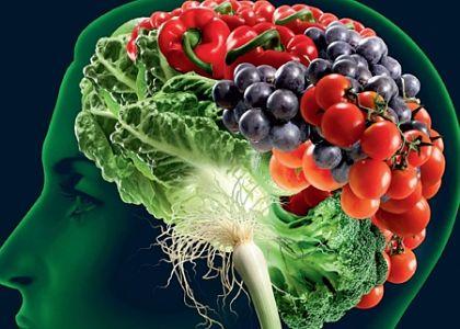 salud cerebro alimentos