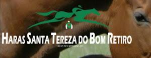 HARAS SANTA TEREZA DO BOM RETIRO