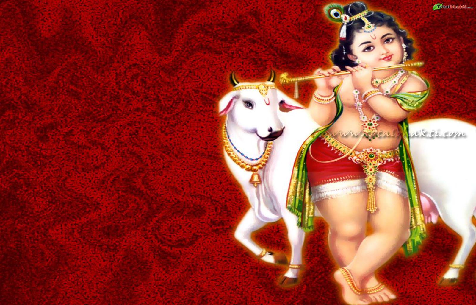 http://1.bp.blogspot.com/-xrDqd3xlWNQ/TlemRxDJGuI/AAAAAAAAAS0/hm537a6siqY/s1600/Lord-Krishna-Wallpapers-6.jpg