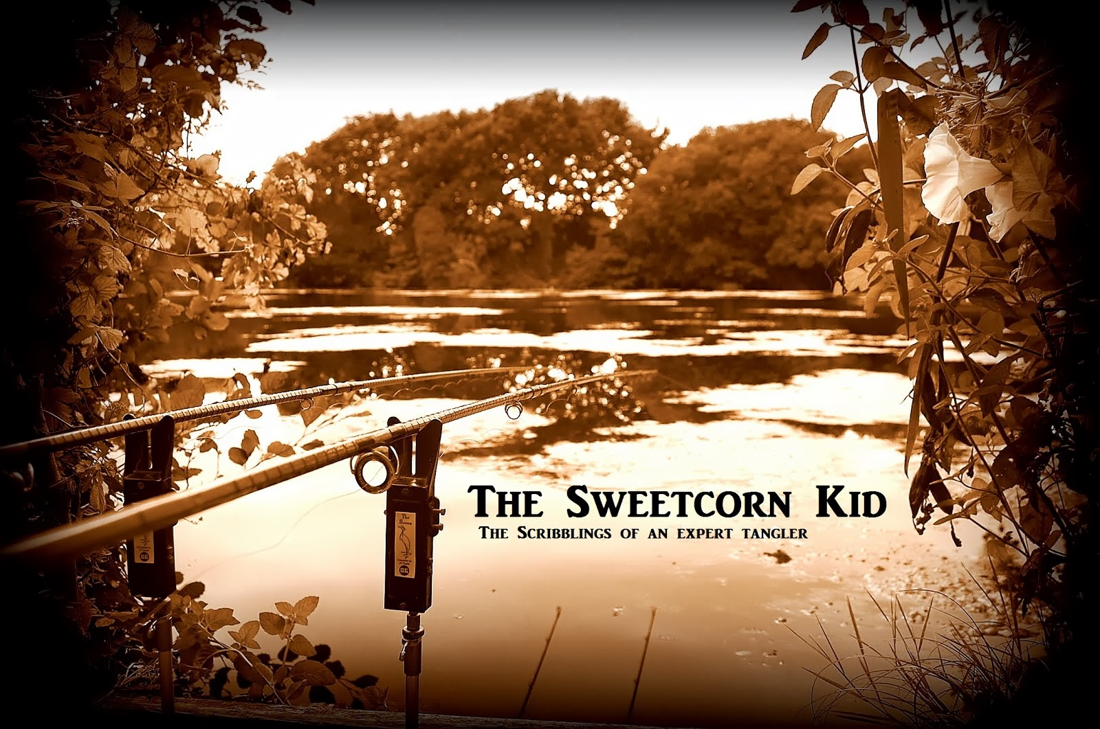 The Sweetcorn Kid