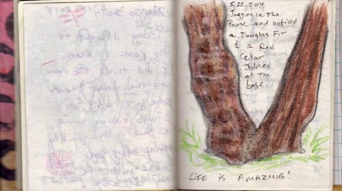 may 22, 2014 gratitude, gallery juana