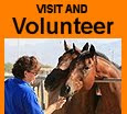 Volunteer and Visit Shiloh