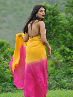 Nikitha Narayan in Saree hot Sexy pics %281%29.jpg